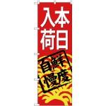 (新)のぼり旗 本日入荷(赤地) (SNB-4298)