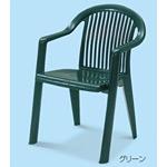 樹脂製 ガーデンフィジー 仕様:アームチェア カラー:グリーン (MZ-595-350-1)