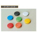カラーマグネット ジャッキー250 丸型40Φ 6個入り カラー:白 (CMZ40-W)