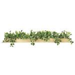 【2019年新商品】【送料無料】ボックスウッドSL (人工観葉植物) 高さ18cm 光触媒 (938A150)