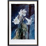 アートポスター 「ホワイト リリーズ」 ペドロ・カノ作