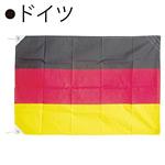 世界の国旗 ドイツ テトロン生地 70×105cm