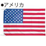 世界の国旗 アメリカ テトロン生地 70×105cm