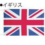 世界の国旗 イギリス テトロン生地 70×105cm