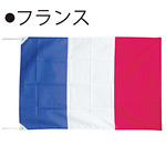 世界の国旗 フランス テトロン生地 90×135cm