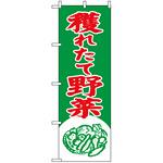 のぼり旗 (2247) 穫れたて野菜