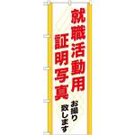 のぼり旗 (GNB-245) 就職活動用 証明写真