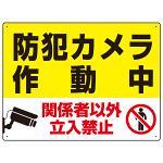 防犯カメラ作動中 関係者以外立入禁止 Cオリジナル プレート看板 W600×H450 エコユニボード