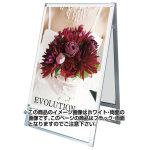 化粧ビス式ポスター用スタンド看板 B1両面ブラック (PSSK-B1RB)