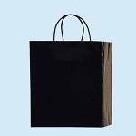 手提袋 PBスムースMー1 黒 (50枚セット)