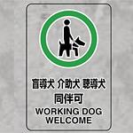 JIS規格標識透明ステッカー 大 盲導犬 介護犬・・ (807-55)