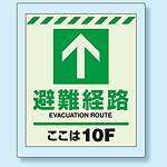 床設置用蓄光・避難口誘導標識 避難経路 10F 360×300 (824-210)