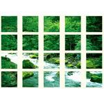 マルチシート 渓流 (917-12A)