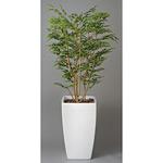 【送料無料】アートゴールデンツリー (人工観葉植物) 高さ180cm 光触媒 (114A850)