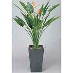 【送料無料】アートストレチア 花付 (人工観葉植物) 高さ160cm 光触媒 (115B800)