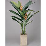 ヘリコニア (人工観葉植物) 高さ200cm 光触媒 (123A680) (※送料見積り)
