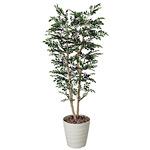 【送料無料】トネリコ 1.8 (人工観葉植物) 高さ180cm 光触媒機能付 (146C450)