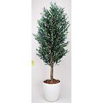 【送料無料】オリーブ (人工観葉植物) 高さ160cm 光触媒 (148A500)