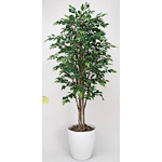 【送料無料】ロイヤルベンジャミン (人工観葉植物) 高さ160cm 光触媒 (150B480)