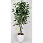 【送料無料】ベンジャミンツリー (人工観葉植物) 高さ160cm 光触媒 (156B360)