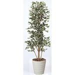 【送料無料】ガジュマルタワーG/W (人工観葉植物) 高さ170cm 光触媒 (160B430)
