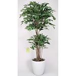【送料無料】トロピカルベンジャミン (人工観葉植物) 高さ160cm 光触媒 (161A380)