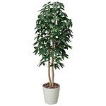 【送料無料】パキラツリー (人工観葉植物) 高さ160cm 光触媒 (170A300)