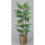 【送料無料】黒竹 (人工観葉植物) 高さ120cm 光触媒 (177A170)