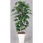 【送料無料】フィカスベンジャミン (人工観葉植物) 高さ120cm 光触媒 (189A170)