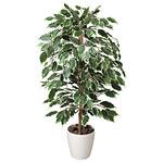 【送料無料】ゴールデンフィカス (人工観葉植物) 高さ100cm 光触媒 (202A150)