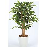 【送料無料】アルデシア (人工観葉植物) 高さ90cm 光触媒 (208A100)