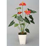 アートアンスリューム (人工観葉植物) 高さ72cm 光触媒 (210A85)