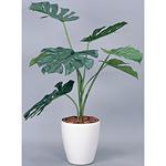 モンステラ (人工観葉植物) 高さ90cm 光触媒 (213A90)