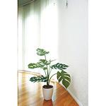 モンステラ (人工観葉植物) 高さ75cm 光触媒 (225C80)