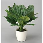 ホスター (人工観葉植物) 高さ45cm 光触媒 (228A50)