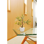 黒竹 (人工観葉植物) 高さ35cm 光触媒 (238A30)