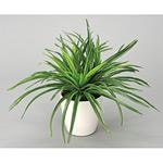ドラセナ (人工観葉植物) 高さ32cm 光触媒 (245A40)
