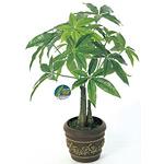 パキラポットM (人工観葉植物) 高さ41cm 光触媒 (252A35)
