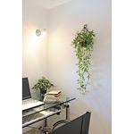 壁掛ジャスミン花付 (人工観葉植物) 高さ85cm 光触媒 (269B75)
