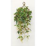 壁掛ローレル実付 (人工観葉植物) 高さ60cm 光触媒 (270A50)