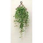 壁掛フィットニア (人工観葉植物) 高さ80cm 光触媒 (271A50)