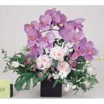 【送料無料】舞華 (造花) 高さ50cm 光触媒 (312A100)