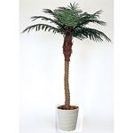 【送料無料】フェニックス (人工観葉植物) 高さ210cm 光触媒 (138A500)