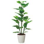【送料無料】フレッシュポトス (人工観葉植物) 高さ150cm 光触媒 (362B220)