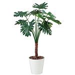 【送料無料】セローム (人工観葉植物) 高さ130cm 光触媒 (365B220)