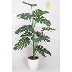 【送料無料】モンステラ (人工観葉植物) 高さ120cm 光触媒 (369A150)