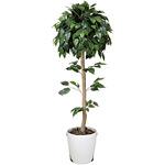 【送料無料】ベンジャミントピアリー (人工観葉植物) 高さ120cm 光触媒 (372B180)