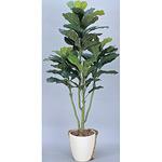 【送料無料】カシワバゴム (人工観葉植物) 高さ130cm 光触媒 (375A160)