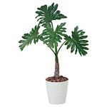 【送料無料】セローム (人工観葉植物) 高さ100cm 光触媒 (376A120)