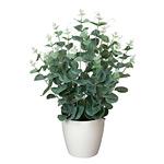 ユーカリ (人工観葉植物) 高さ42cm 光触媒 (385A50)